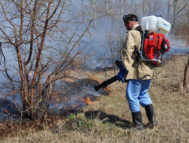 Пример работы лесопожарной моделью